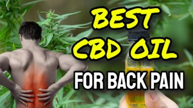 Best CBD Oil For Back Pain (CAUTION: WATCH Before Buying!)