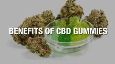 Pure CBD Gummies Benefits [MUST SEE!]
