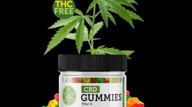 CBD Gummies Recommended By Dr Oz (BEWARE: Watch!)