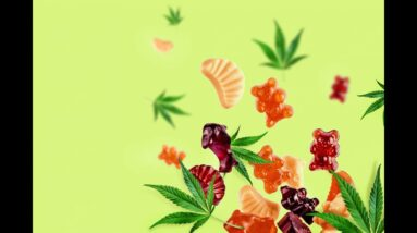 Best CBD Gummies For Anxiety (My Results!)